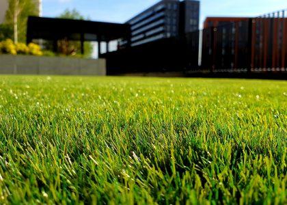 Landscape maintenance Services - ECObri
